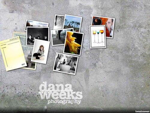 Portafolios de fotografia