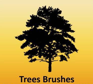 trees brushes photoshop