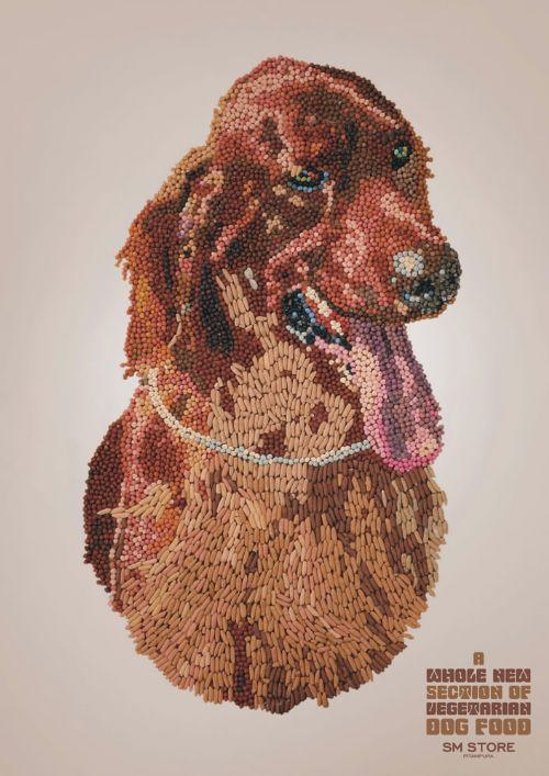 arte-perro