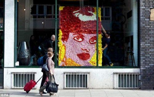 Caras de mujer hechas con flores Retrato-lily-allen-2