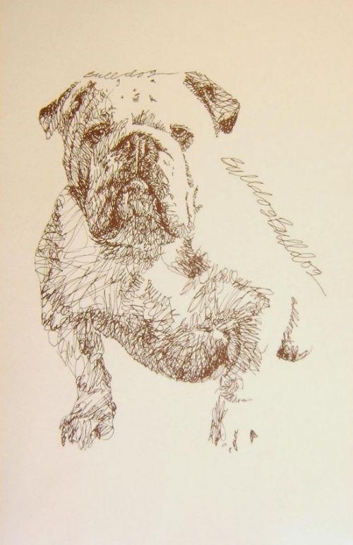 retrato perros texto