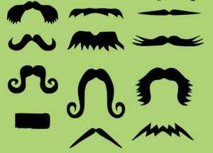 bigotes pinceles