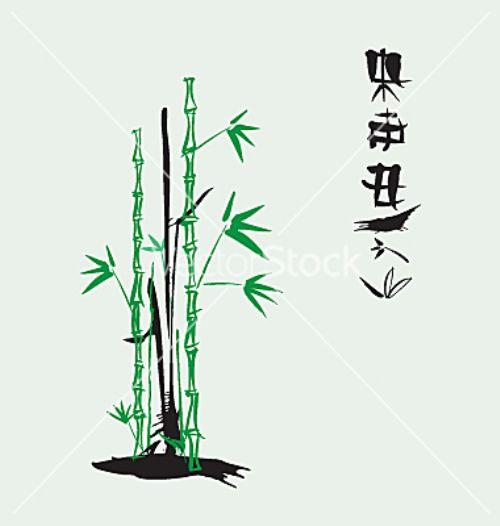 bambu vectores
