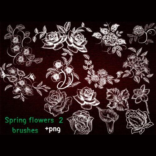 pinceles flores primavera