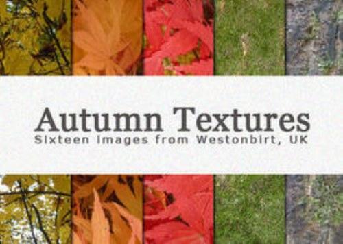 texturas hojas otoño