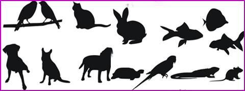 vectores-animales