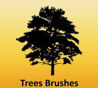 trees brushes photoshop
