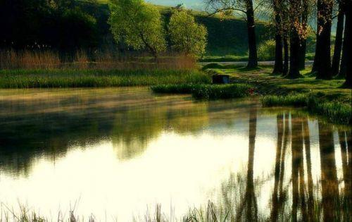 naturaleza reflejada