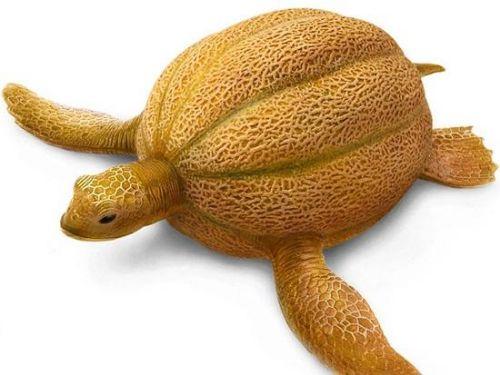 animales modificados