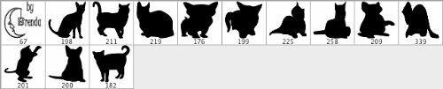 pinceles gato