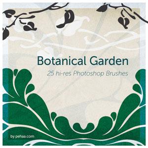 pinceles botanica