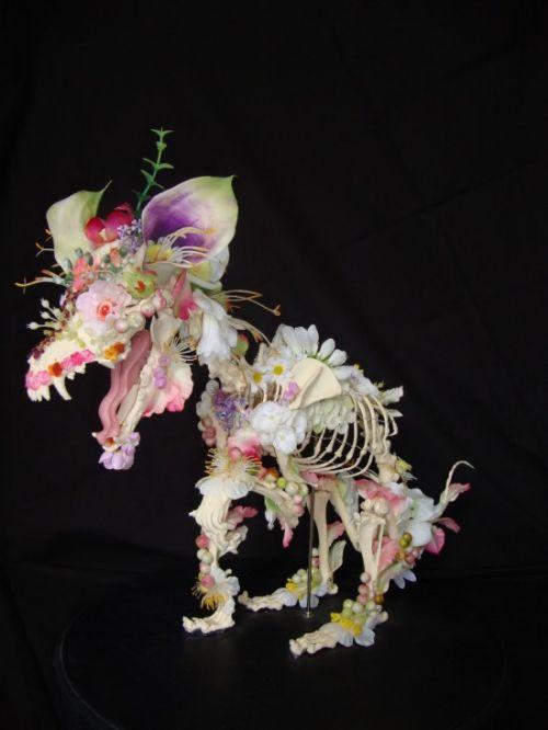 arte flores esqueletos