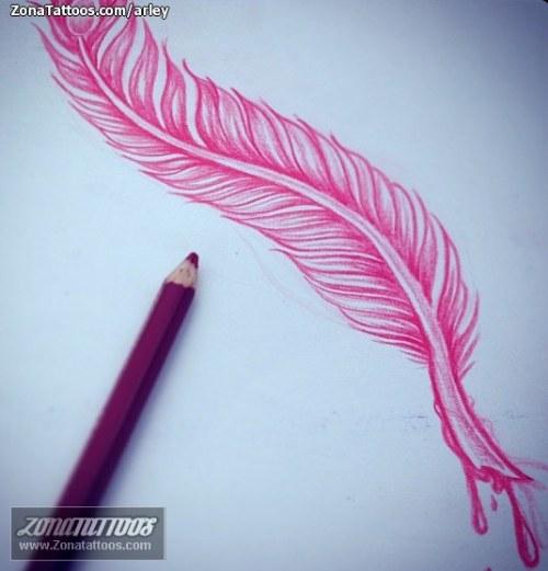 tatuaje pluma