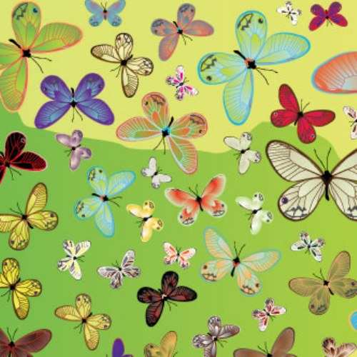 vector mariposas