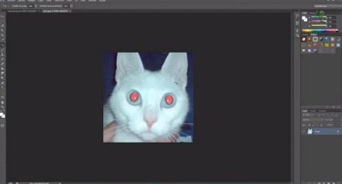 corregir ojos rojos