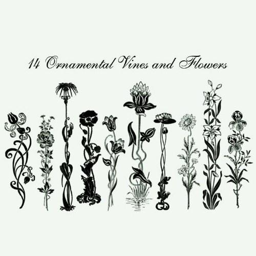 pinceles ornamentos flores