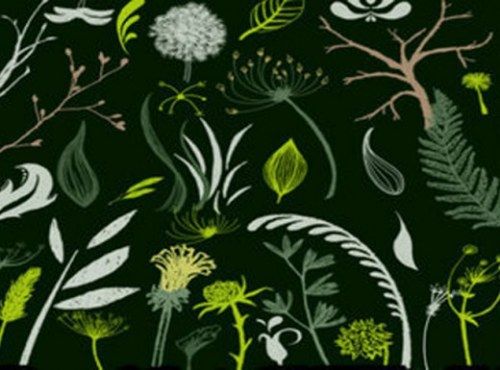 pinceles hojas verdes