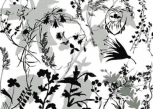 pinceles plantas gratis