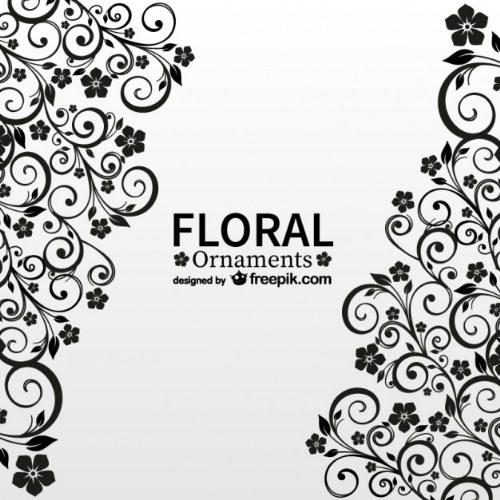 vector illustrator ornamentos flores